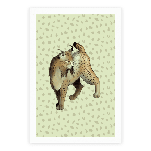 Wild Cat Lynx