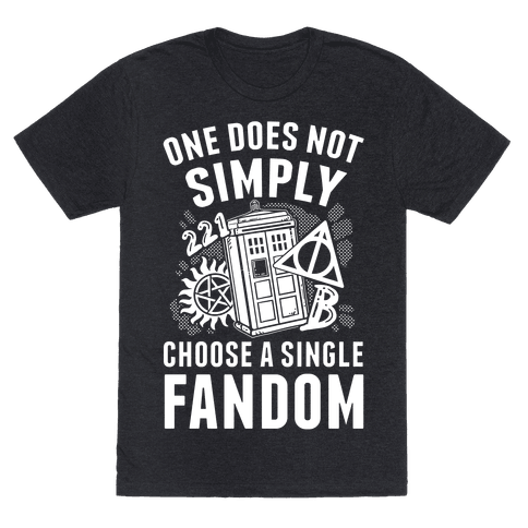 One Does Not Simply Choose A Single Fandom